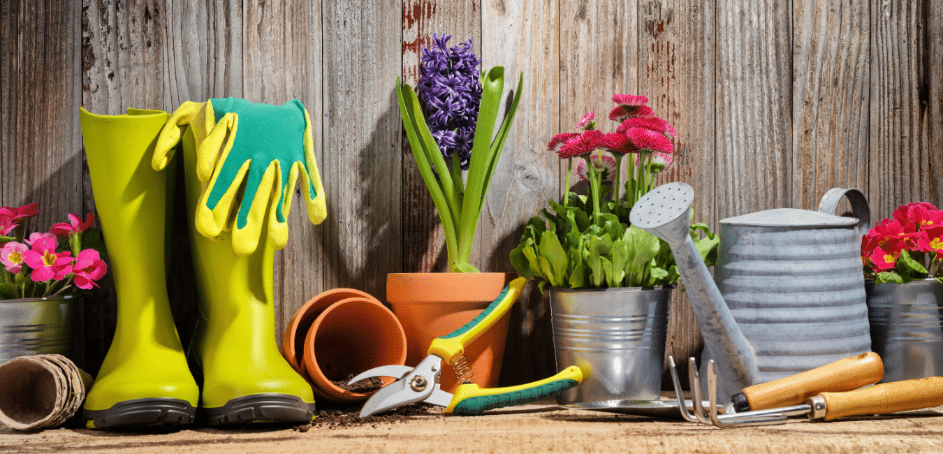 Potted plants, garden tools, and accessories.
